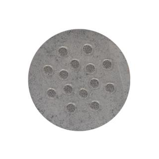 12001 Silver Pearl Dust bulina 2