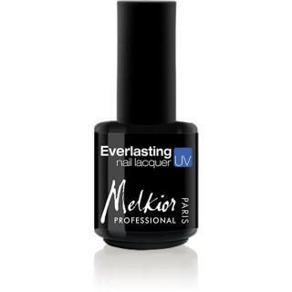 VERNIS SEMI PERMANENT EVER FLY 15ML