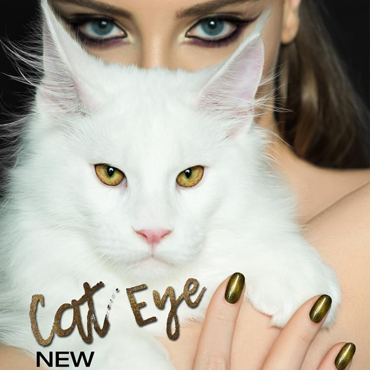 NOUVEAU! Cat Eye vernis à ongles semi-permanent.